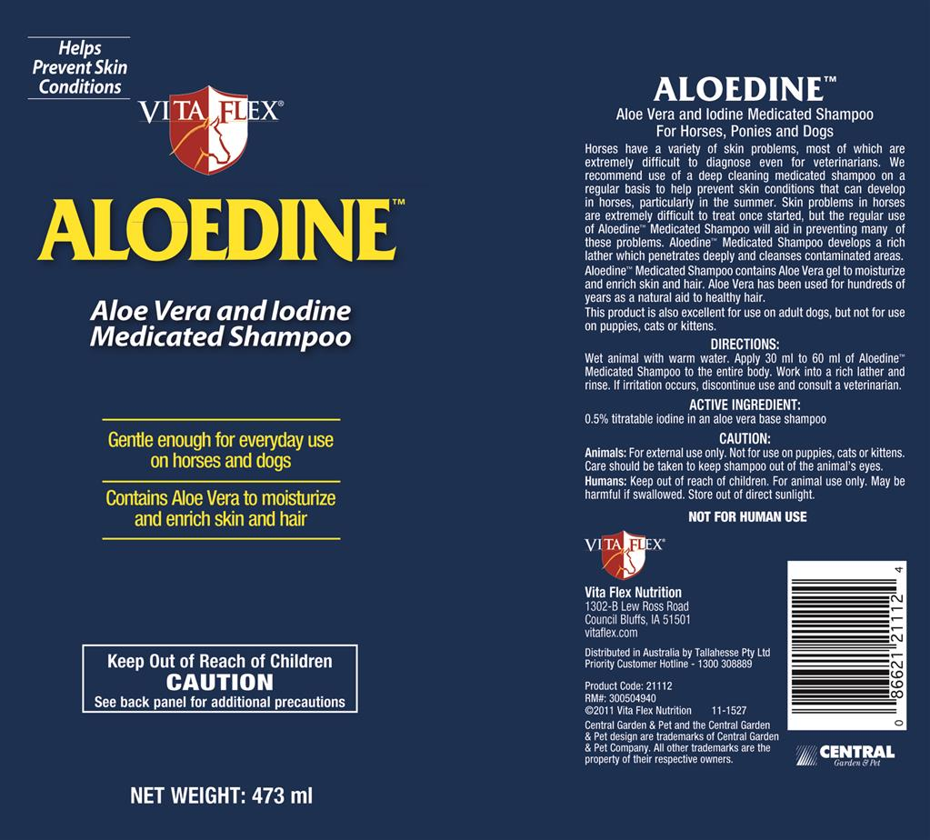 20-00319_Aloedine 473ml.jpg